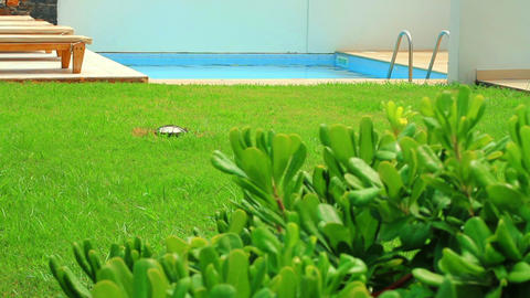 swimming pool in the garden Stock Video Footage