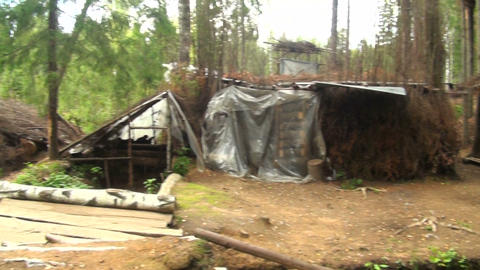 Military camp in the woods Stock Video Footage