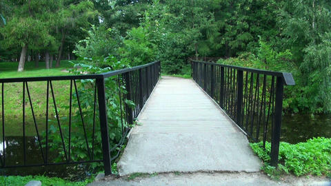 Bridge over the river in the Park Stock Video Footage