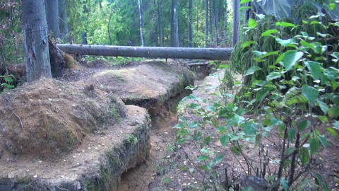Military forces, trench in the forest Footage