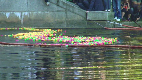 Rubber toy ducks floating on the river Stock Video Footage