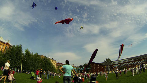 Kite in the sky Stock Video Footage