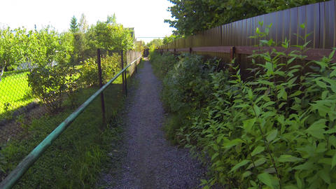 The path between the fences Stock Video Footage
