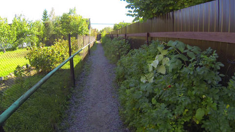 The Path Between The Fences stock footage