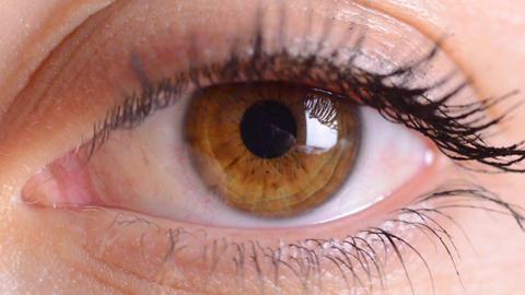 eye macro Footage