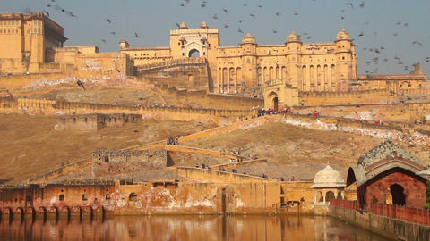 fort and doves in Jaipur India Stock Video Footage
