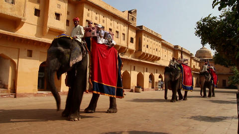 tourists on elephants in Jaipur fort India Stock Video Footage