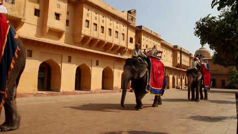 tourists on elephants in Jaipur fort India Footage