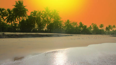 beautiful morning landscape on beach in India Stock Video Footage