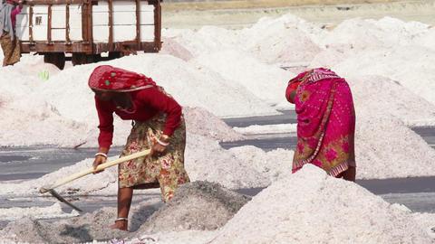 salt mining on Sambhar lake in India Footage