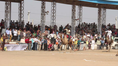 Camel racing at Pushkar camel fair in India Stock Video Footage