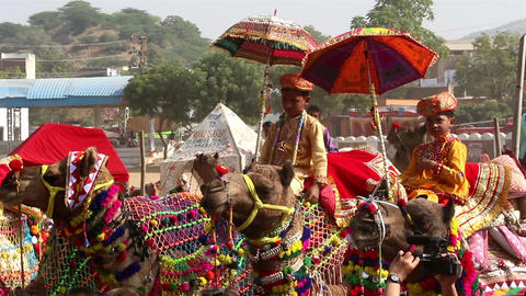 competition to decorate camels at fair in Pushkar Stock Video Footage