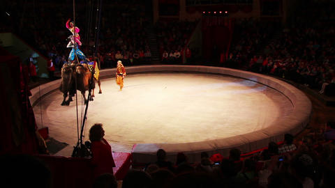 performance of artists riding on camels at circus Footage