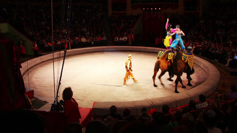 performance of artists riding on camels at circus Stock Video Footage