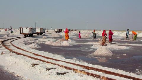 salt mining on Sambhar lake in India Stock Video Footage