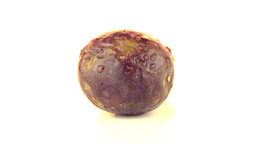 Passion fruit Footage