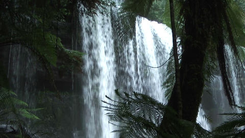 waterfall in tasmania rain forest in mount field n Stock Video Footage