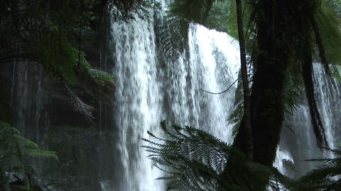waterfall in tasmania rain forest in mount field n Footage