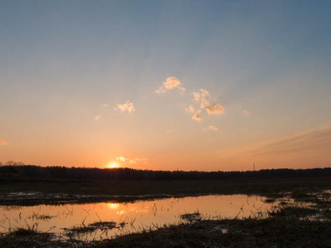 Sunset reflected in a puddle on the field. Time La Stock Video Footage