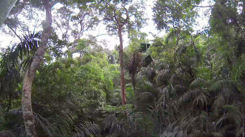 Aerial tram going up a hillside in Gamboa, Panama Stock Video Footage