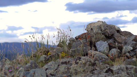 Stone mound in the steppe Stock Video Footage