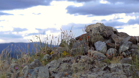 Stone mound in the steppe Footage