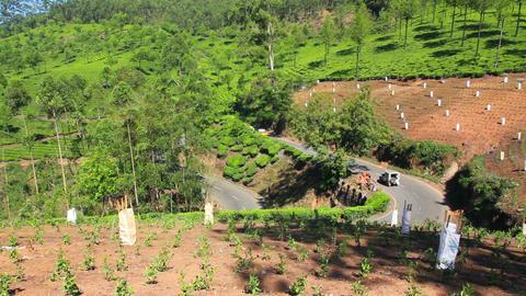 road between tea plantations in Munnar Kerala Indi Footage