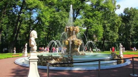 renovated Summer garden park in St. Petersburg Rus Stock Video Footage