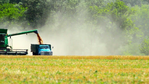 agriculture and harvester Stock Video Footage