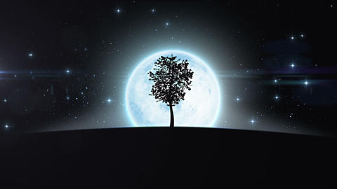 Tree growing under the moon. HD 1080 Animation