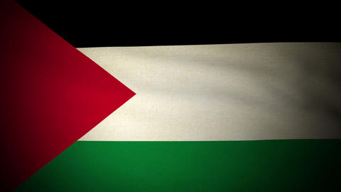 Flag Palestine 04 Stock Video Footage