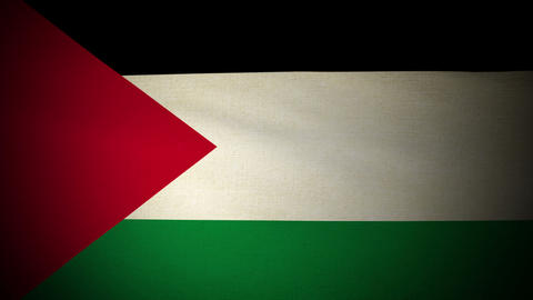 Flag Palestine 04 stock footage