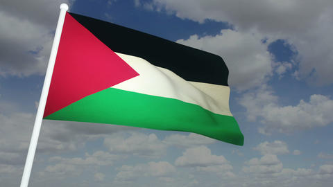 Flag Palestine 02 Stock Video Footage