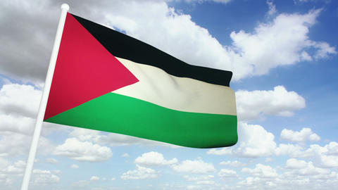 Flag Palestine 02 Stock Video Footage