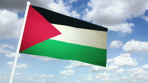 Flag Palestine 02 stock footage