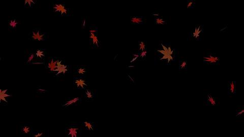 紅葉 Animation