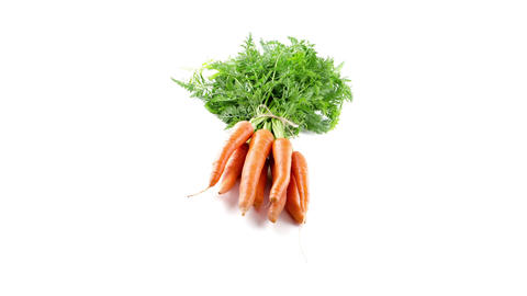 Carrots Stock Video Footage