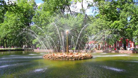 Sun fountain in petergof park St. Petersburg Russi Stock Video Footage