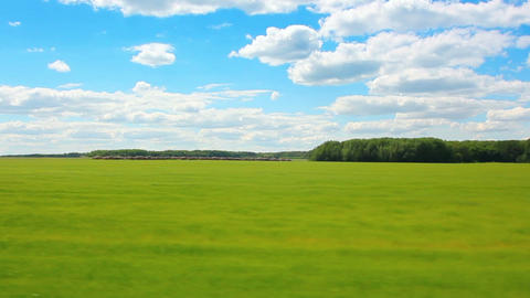 driving along green field at summer Stock Video Footage