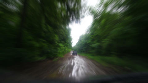 Riding on muddy forest road - timelapse Stock Video Footage