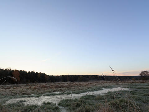 Dawn over the frozen swamp. Time Lapse. 4x3 Stock Video Footage