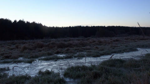 Dawn over the frozen swamp. Zoom. Time Lapse Stock Video Footage