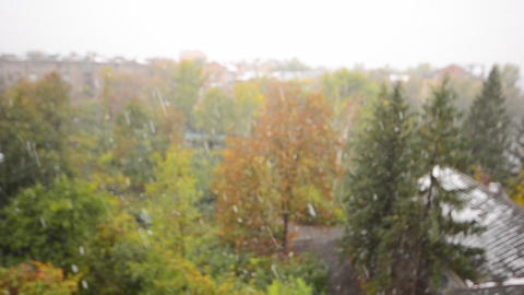 First Snow Fall in the City, Defocused View Footage