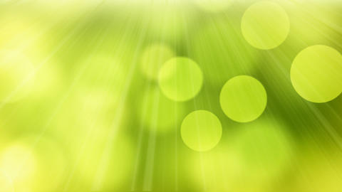 loop slowly flying green yellow circle bokeh light Animation