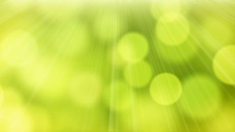 loop slowly flying green yellow circle bokeh light Stock Video Footage