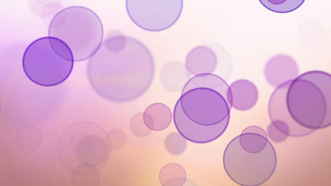 pink violet bokeh circles loop background Stock Video Footage