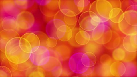 red orange pink yellow circle bokeh lights loop Stock Video Footage