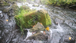 fast river with clear water Stock Video Footage
