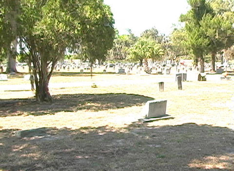 Beautiful Brunette in a Cemetery-12 Stock Video Footage