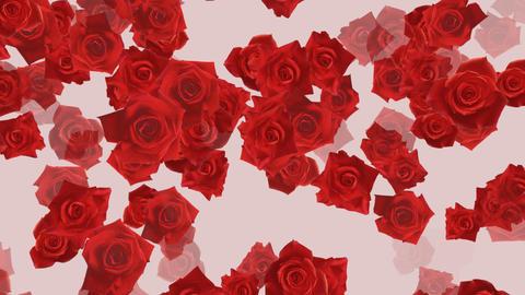 Flower 2 R1S HD Stock Video Footage